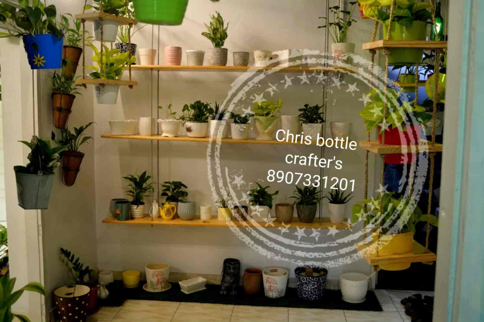Chris Bottle Crafters Indoor Home Garden, Kolenchery   Bonsai Plant Dealers  In Ernakulam   Justdial