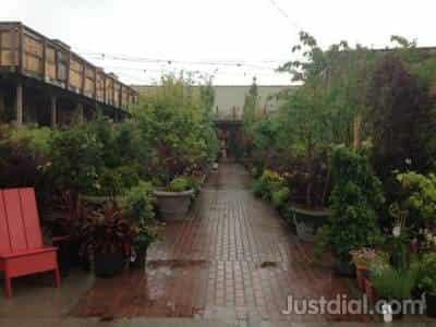 chelsea garden center 444 van brunt st brooklyn ny 11231 1of10 - Chelsea Garden Center