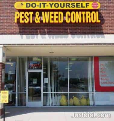 Diy Pest Control Plano Tx | Zef Jam